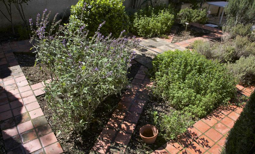 jardin aux sens Mas de l'Hermitage Arles