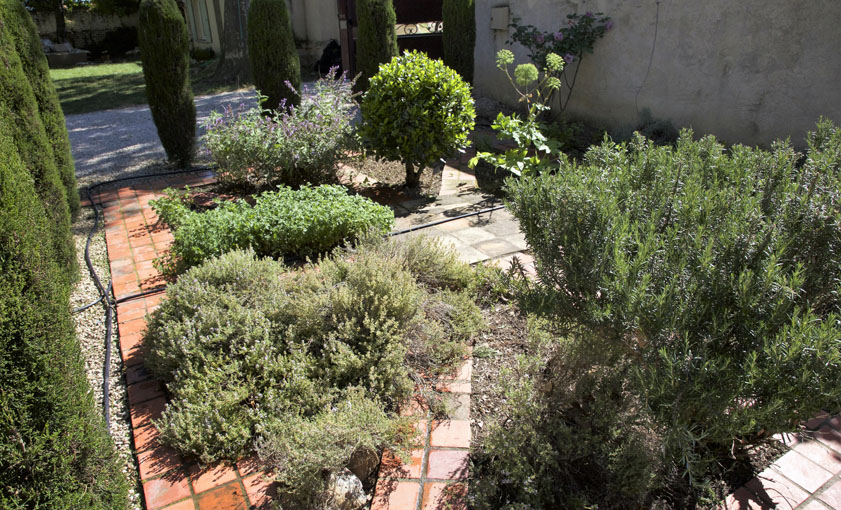 jardin de sens Mas de l'Hermitage Arles