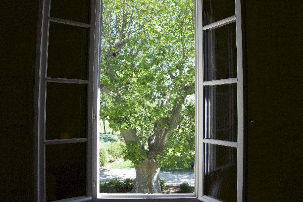 Vue Gîte Alpilles Mas de l'Hermitage